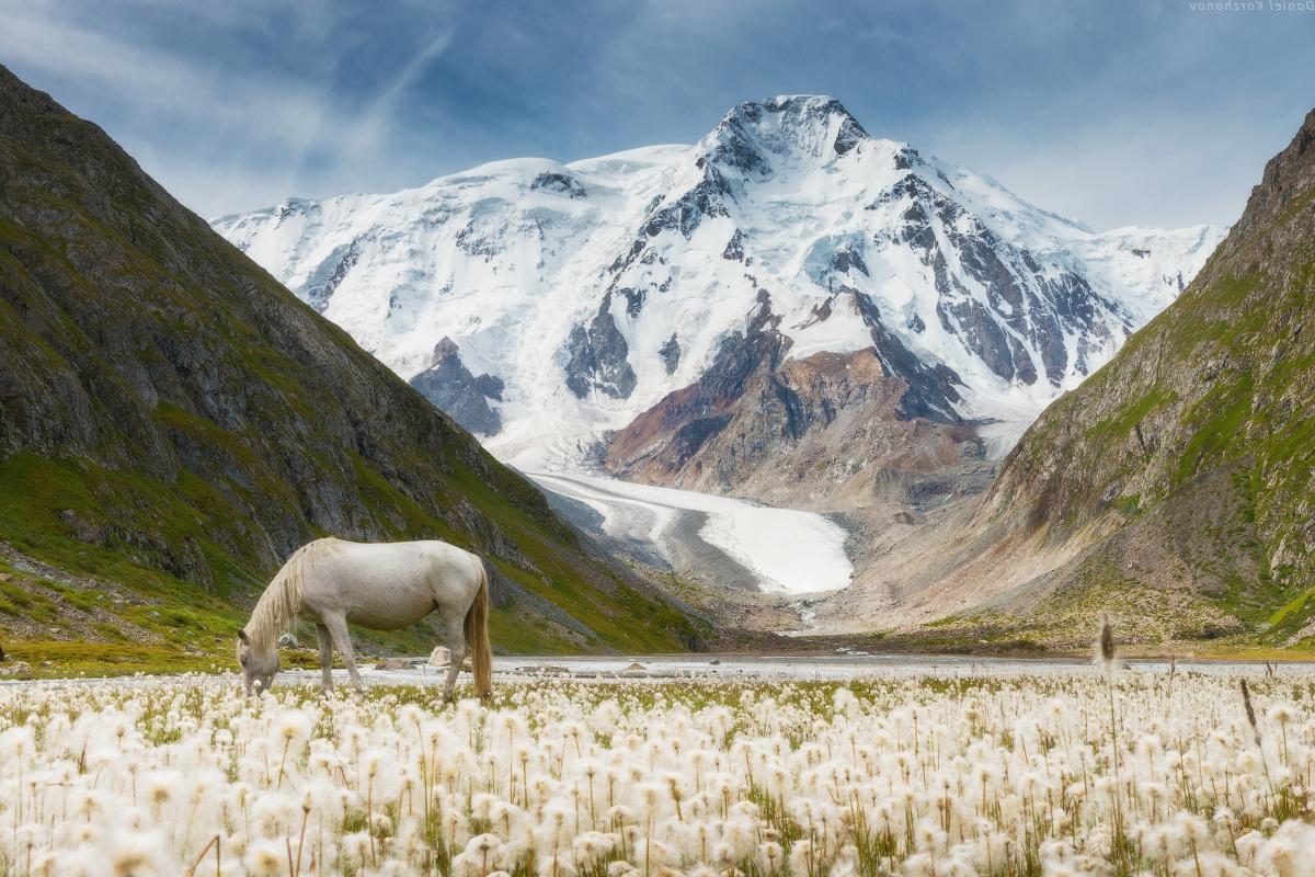 лучше киргизская фотография симпатична конечно