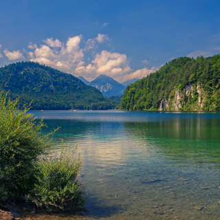 Alpsee at summer