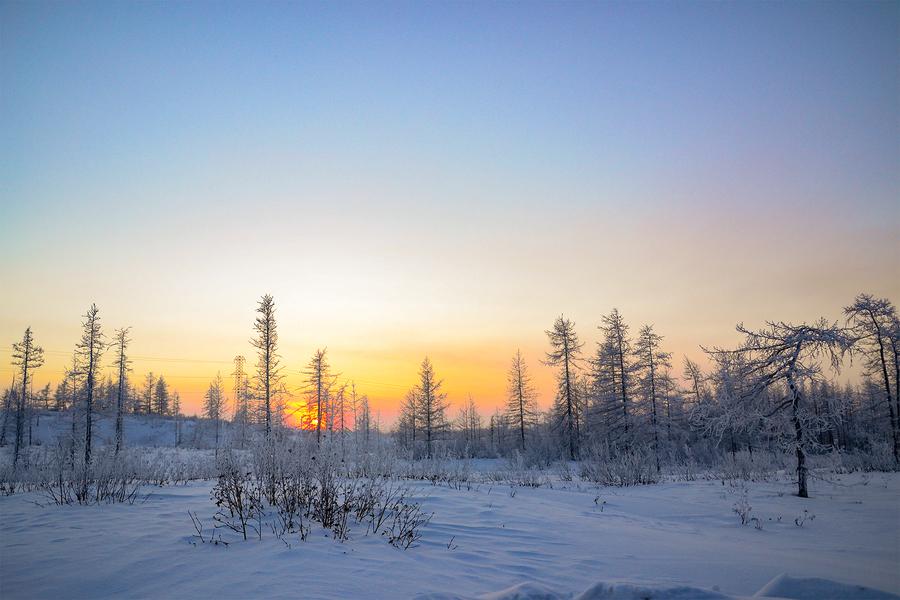 поеду картинки к суровой зиме тундры менее
